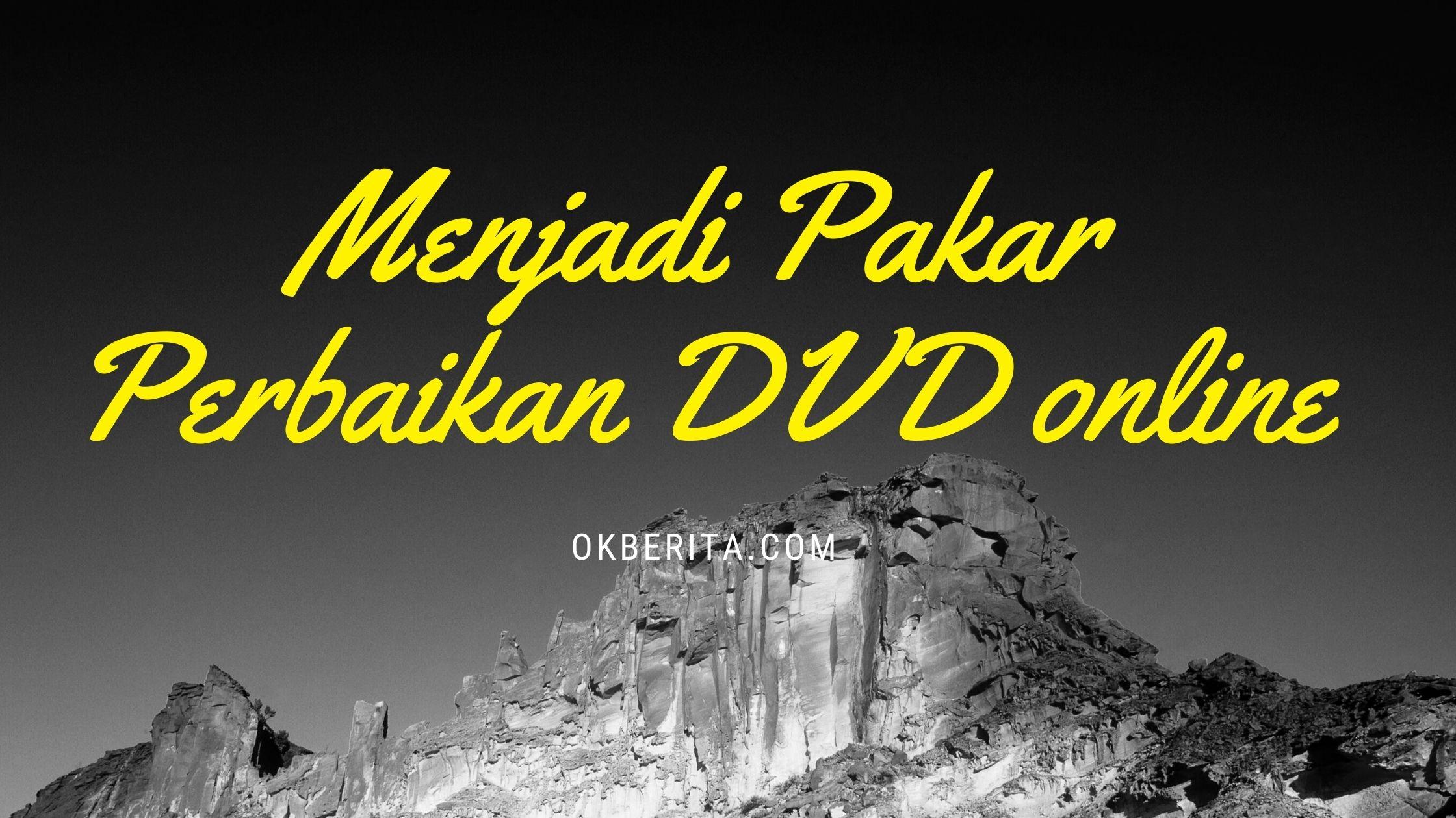 Menjadi pakar perbaikan DVD online